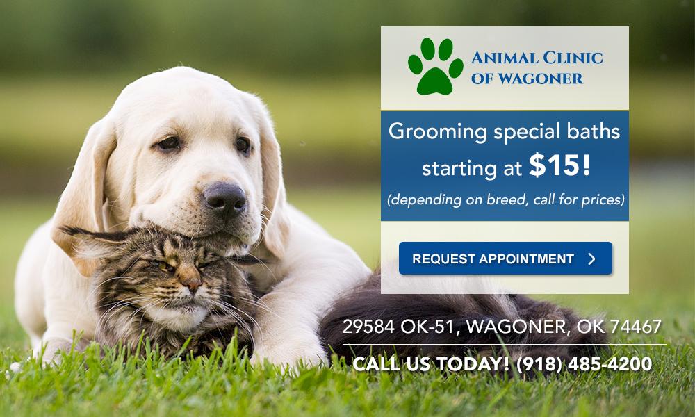 Animal Clinic of Wagoner_Grooming